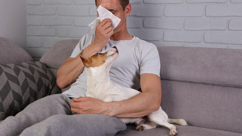 Alergia na zwierzęta: objawy