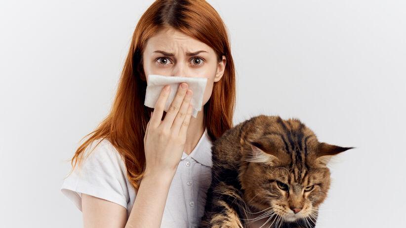 Alergię wywołuje nie tylko sierść zwierząt, ale także ich wydzieliny