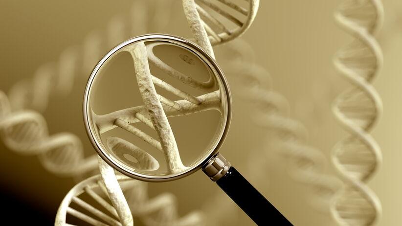 Wynik testu genetycznego zawsze trzeba skonsultować z ekspertem