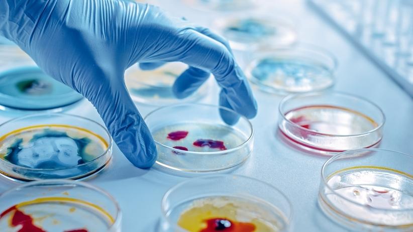 Jak leczyć infekcje odporne na antybiotyki? Naukowcy odkryli sposób