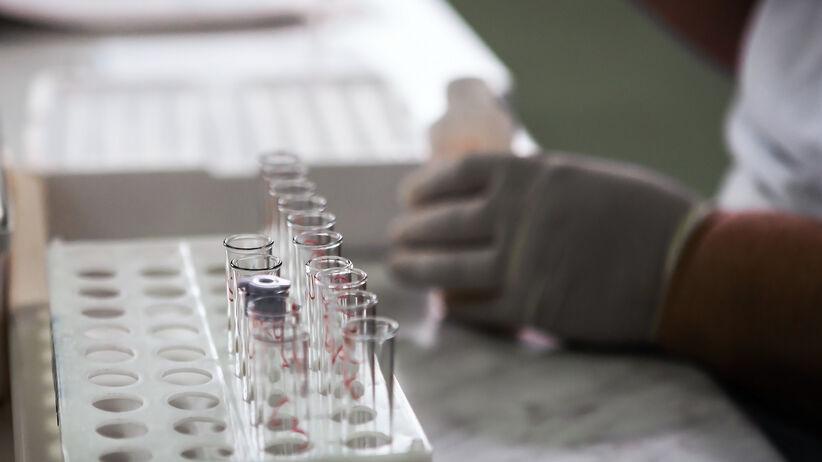 Koronawirus: szczepionka powstaje w ekstremalnym tempie.