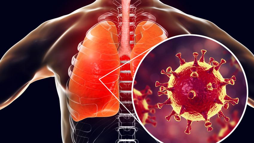 Koronawirus w Chinach. Czy grozi nam epidemia? - Zdrowie