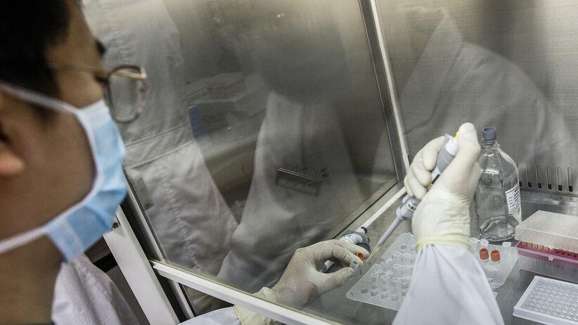 Skąd pochodzi koronawirus? Laboratorium czy z jaskini?