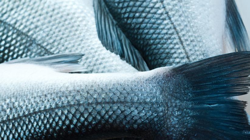Rybia łuska to choroba genetyczna