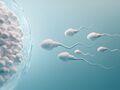¿Qué puede dañar la fertilidad?  8 factores