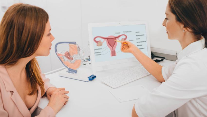 Lekarz objasnia budowę macicy