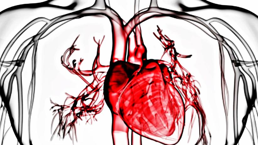 Polacy będą produkować modele serca w druku 3D