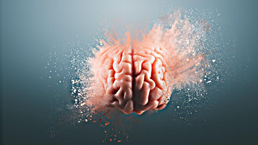 Pamięć, mózg, przeszczep pamięci