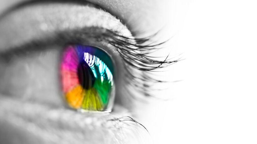 Daltonizm, czyli ślepota barw