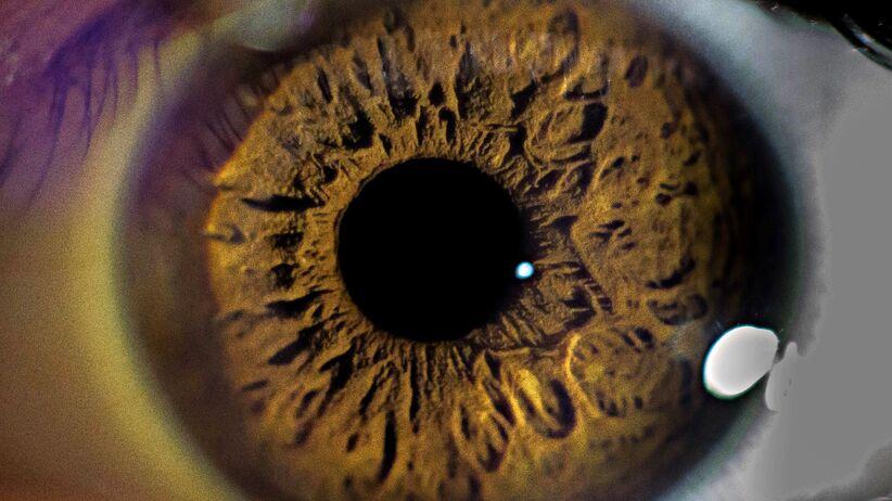 oko, źrenica, zaćma