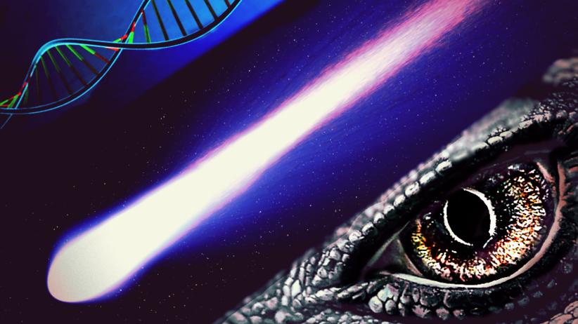 Iryd lekiem na raka płuc? Metal z komety, która zabiła dinozaury, uratuje ludzi?