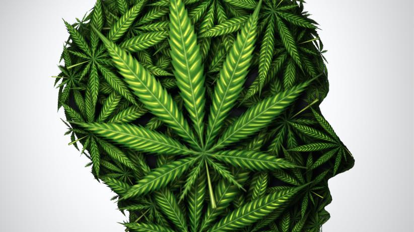 Marihuana, mózg, nastolatki, alkohol, skutki palenia marihuany dla młodzieży