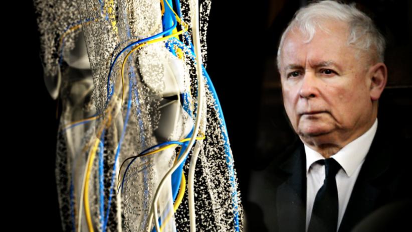 Jarosław Kaczyński, kolano, infekcja bakteryjna