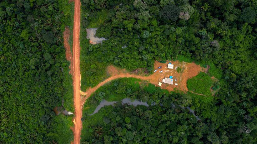 Tereny ludu Arara w Amazonii