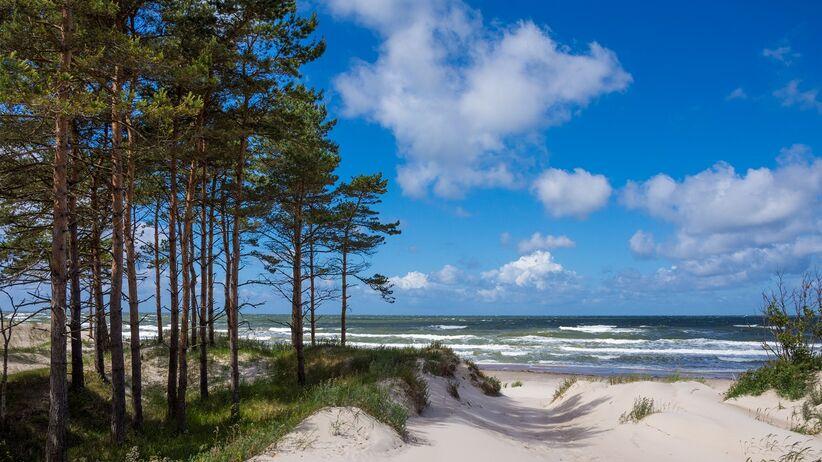 Plaża nad Morzem Bałtyckim