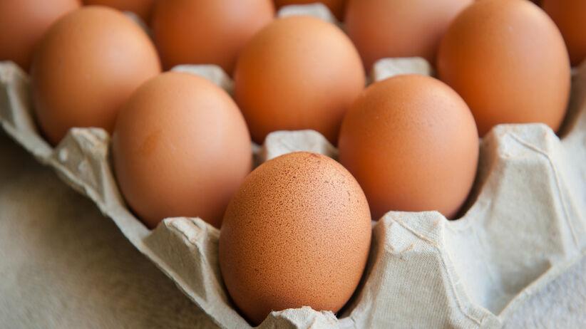 Salmonella w jajkach. Ostrzeżenie GIS