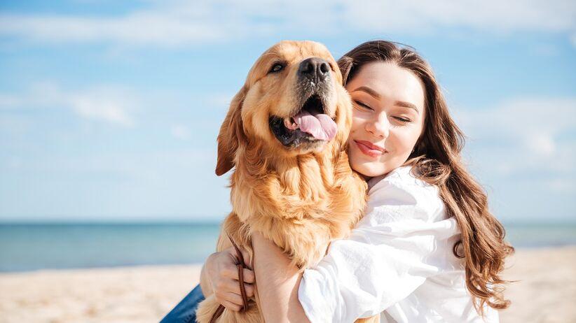 Dogoterapia – jak działa i komu może pomóc?