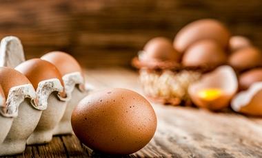 GIS ostrzega: na jajkach sprzedawanych w Biedronce są pałeczki salmonelli
