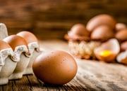 Jajka z salmonellą