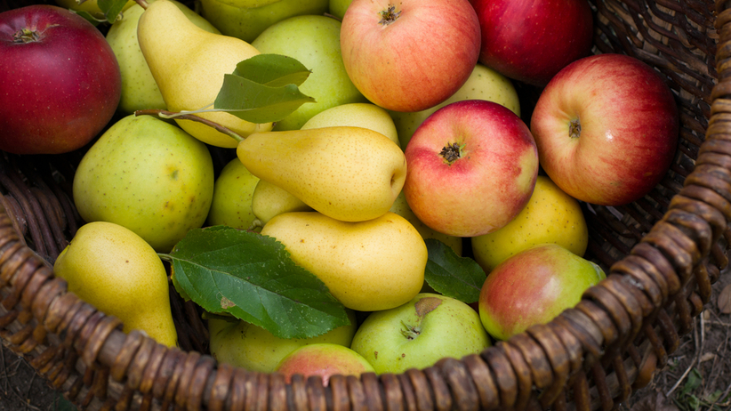 Jabłko czy gruszka - co zdrowsze?