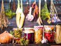 ¿Qué productos contienen probióticos?