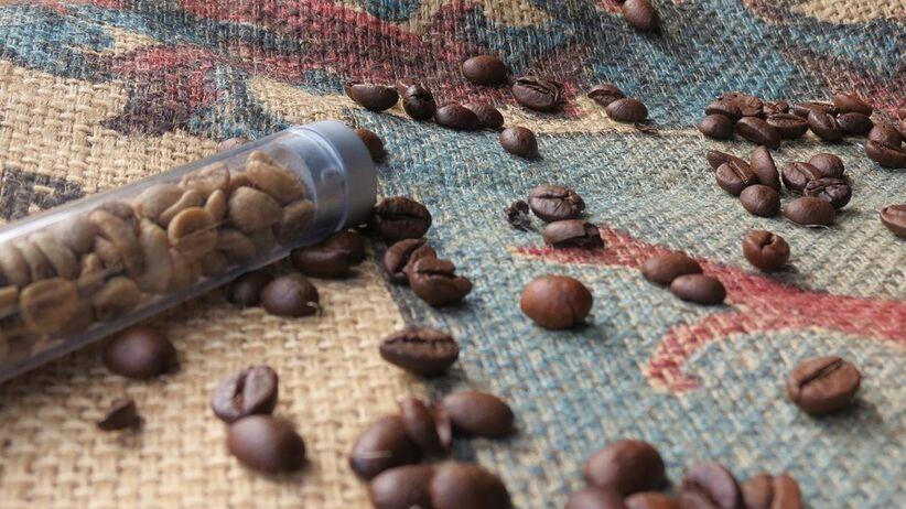 Zielona kawa na odchudzanie. HIT czy MIT?