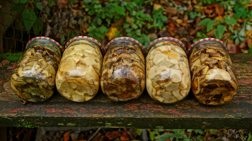 Jak zamarynować grzyby? Prosty przepis ze składników, które masz w domu