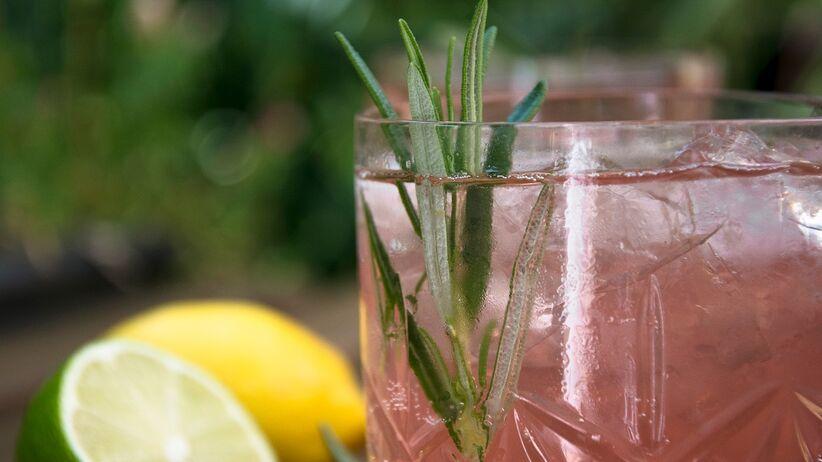 Lemoniada rabarbarowa z rozmarynem - przepis