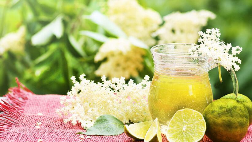 Syrop z kwiatów czarnego bzu na grypę - przepis
