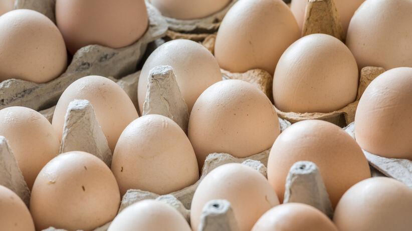 Jaja w wytłaczankach