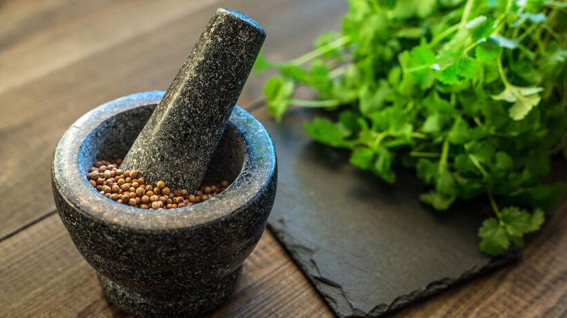 Kolendra - właściwości lecznicze, do czego jeść