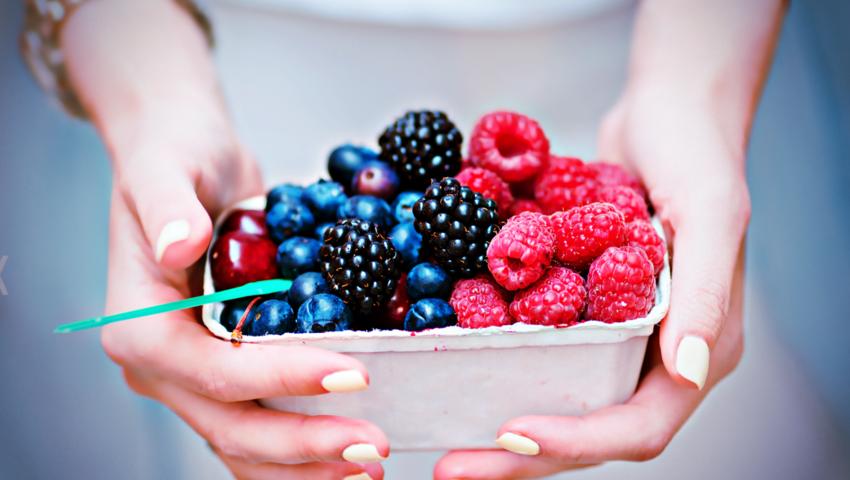 Bąblowica, niemyte jagody, brudne owoce leśne, tasiemiec