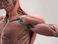 Choroba Pompego: objawy, przyczyny, leczenie. Choroby rzadkie