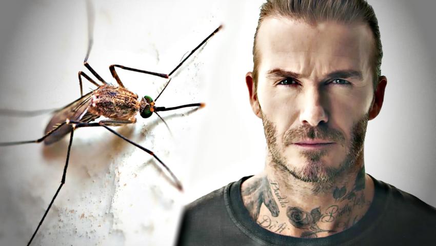 David Beckham walczy z malarią i... rojem komarów. Nietypowa kampania