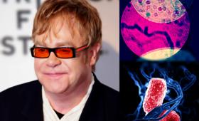 Elton John odwołuje koncerty. Zaraził się śmiertelnie niebezpieczną bakterią