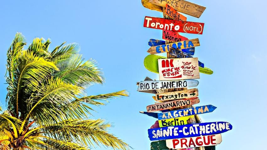 Jedziesz na egzotyczne wakacje? Jakie choroby grożą turystom w tropikach?