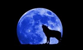 Jak księżyc wpływa na nasz organizm?