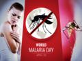Malaria: objawy, leczenie, komary, ukąszenia, jak się chronić przed chorobą?