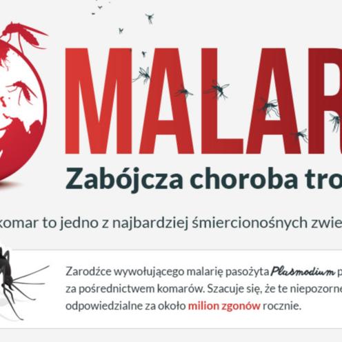 Malaria, komary, Światowy Dzień Walki z Malarią, ukąszenia komarów