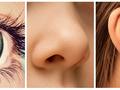 Wzrok, węch, słuch - superzdolności