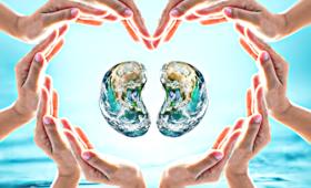 Rak nerki: objawy, leczenie, infolinia dla pacjentów, Dzień Raka Nerki 21 czerwca 2018