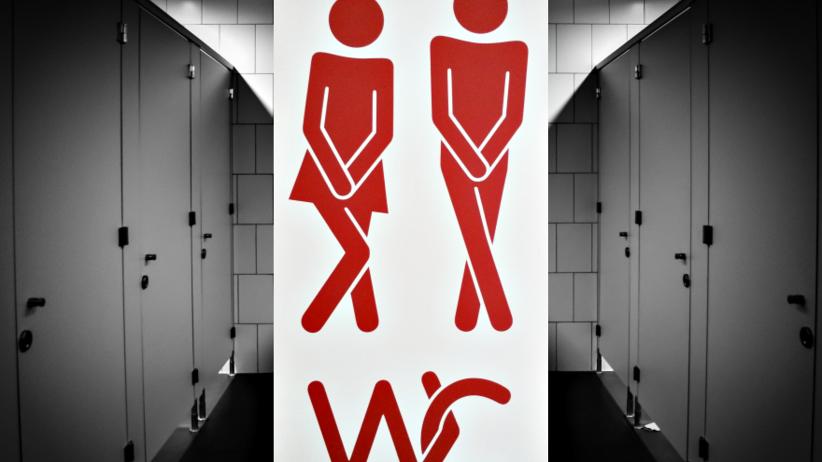 Jakie zarazki kryją się w szkolnych toaletach? Raport Państwowej Inspekcji Sanitarnej