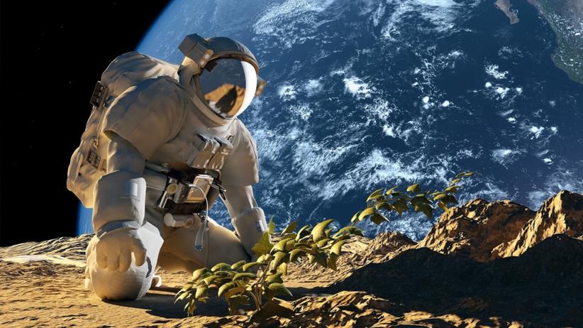 Kartofle na Marsie, czyli co właściwie można jeść w kosmosie?