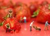 Ekstrakt z truskawek może zapobiegać nowotworom piersi
