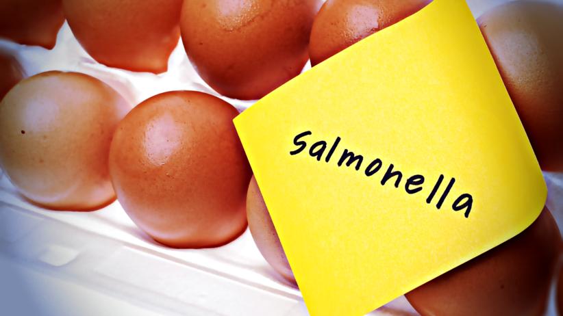 Salmonella w jajkach, które trafiły do sprzedaży! Ostrzeżenie publiczne