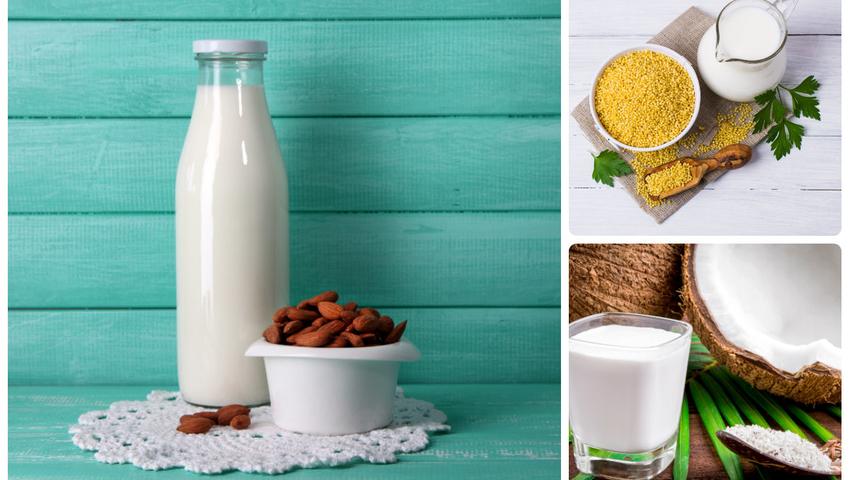 Napoje roślinne, mleka roślinne - przepisy
