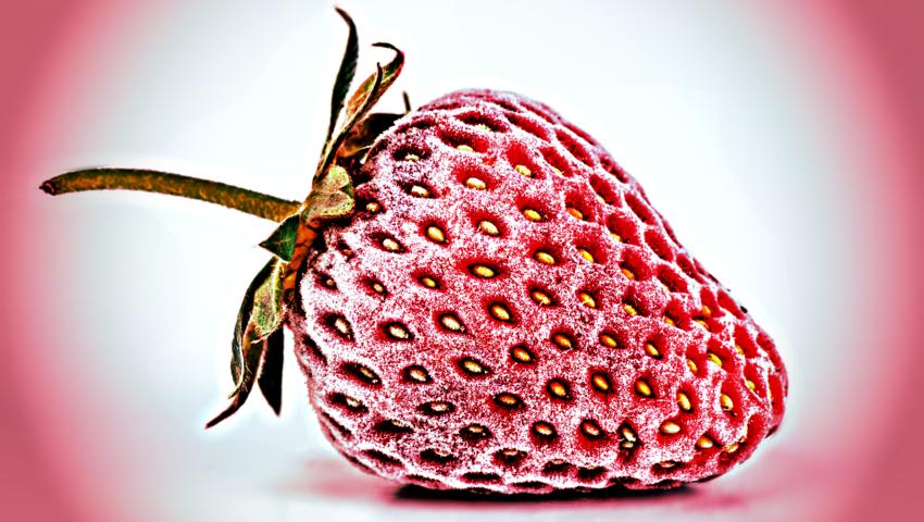 Mrożone truskawki z Polski z wirusem WZW typu A! 13 zarażonych w Szwecji