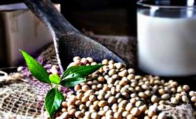Nie dla masła roślinnego i mleka sojowego. UE walczy z nazewnictwem