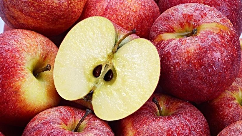 Nasiona jabłek mogą być trujące