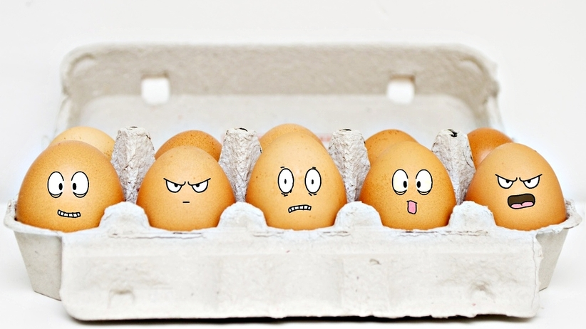 PORADNIK: Co oznaczają kody numeryczne na jajkach?
